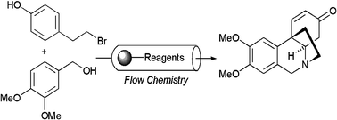 Performing Solid Phase Chemistry in Flow Chemistry Systems