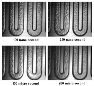 Liquid-Liquid Two-phase Flow Patterns in a Serpentine Microchannel